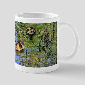 Muscovy Ducks Mugs - CafePress