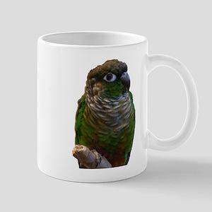 Conures Mug
