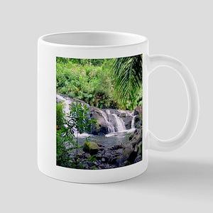 Hahalawe Falls Maui Mugs