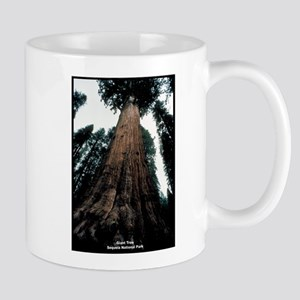 Sequoia National Park Tree Mug
