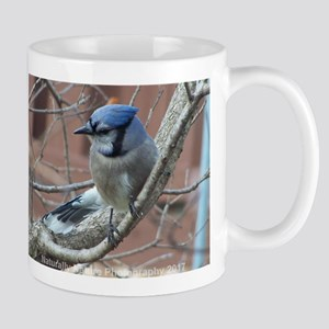 BlueJay Mugs