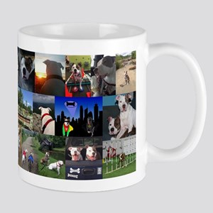 Adventures of mason & Bosley 2 Mugs