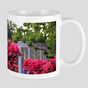 Old Well in Spring Mugs