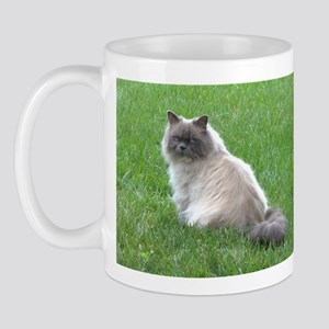 Himalayn Kitty Mug