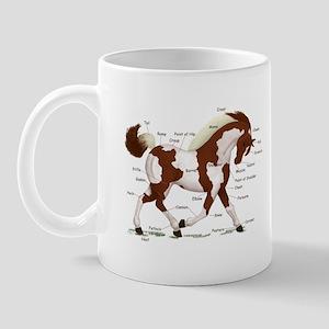 Chestnut Tobiano Horse Anatomy Mug