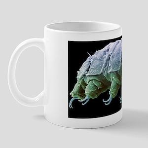 Water bear, SEM Mug