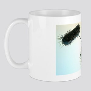 Bacterial conjugation, artwork Mug