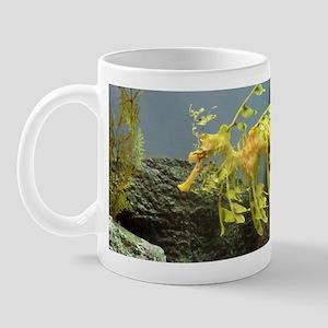 Leafy Sea Dragon With Rocks Mugs