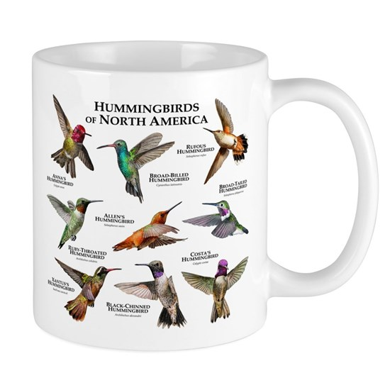 Hummingbirds of the North America