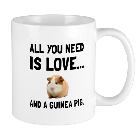 Love And A Guinea Pig