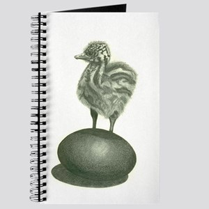 Emu Chick With An Attitude! Journal