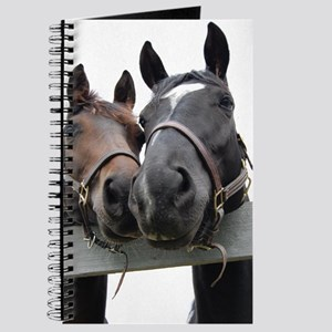 Kissing Horses Journal