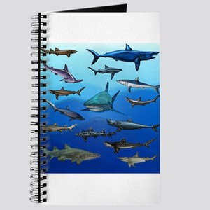 Shark Gathering Journal
