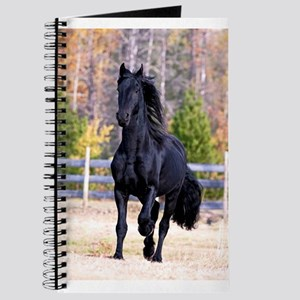 Frisian Horse Stallion 02 Journal