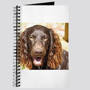 LS boykin spaniel Journal