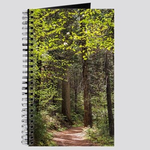 Forest Trail Journal