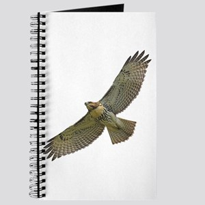 Soaring Red-tail Hawk Journal