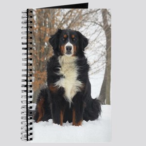 Berner in Snow Journal