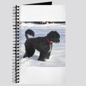 portuguese water dog full Journal