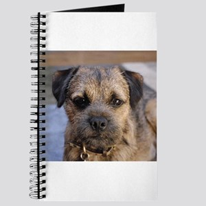 border terrier Journal