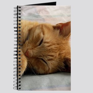 Sweet Dreams Journal