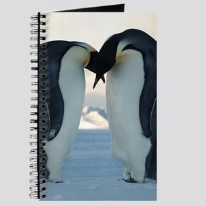 Emperor Penguin Courtship Journal