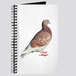 Red Pigeon (Isolated) Journal