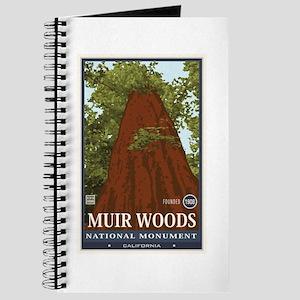 Muir Woods 3 Journal