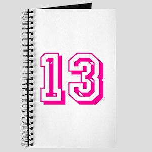 13 Pink Birthday Journal