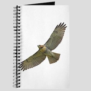 Soaring Red-tail Hawk Journal