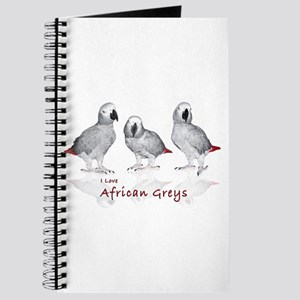 african grey parrots Journal