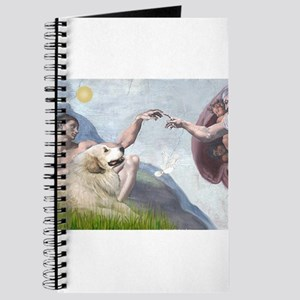Creation / Gr Pyrenees Journal