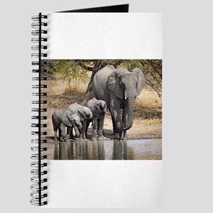 Elephant mom and babies Journal