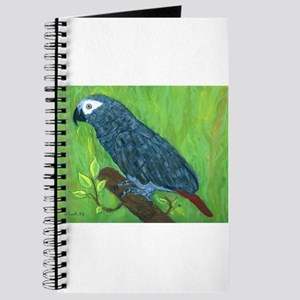 African Grey Parrot Journal