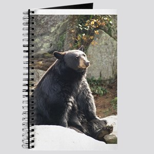 Black Bear Sitting Journal