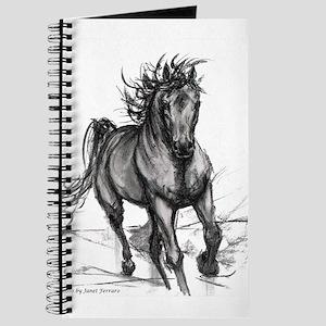 Coming Through Horse Journal
