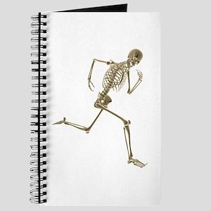 Skeleton Journal
