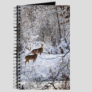 A Winter Wonderland Journal
