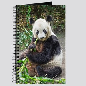 Panda Bear 1 Journal
