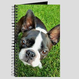 Boston Terrier Gaze Journal