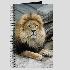 Lion_2014_1001 Journal