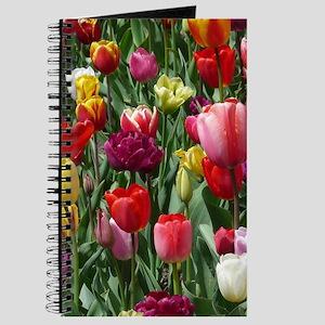 Tulip_2015_0207 Journal