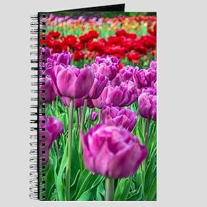 Tulip Field Journal