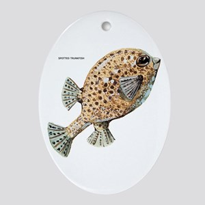 Spotted Trunkfish Fish Ornament (Oval)