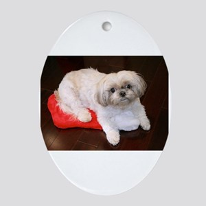 Dog Holiday Ornament Oval Ornament