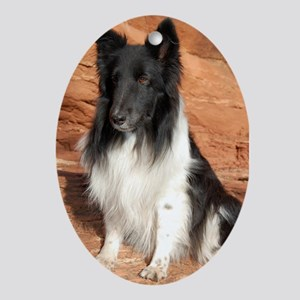 BLack and White Sheltie Ornament (Oval)