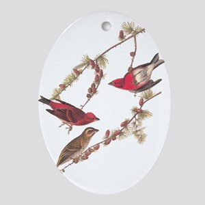 Audubon Purple Finch Ornament (oval)
