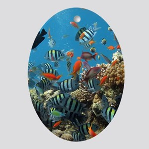 Exotic Fishes and Underwater Plants Oval Ornament