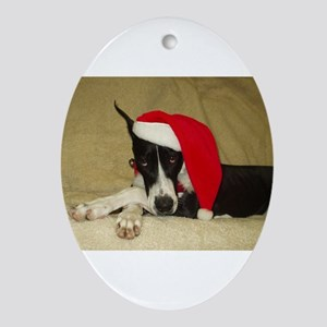Santa Mantle Great Dane Oval Ornament