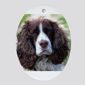 english springer spaniel Oval Ornament